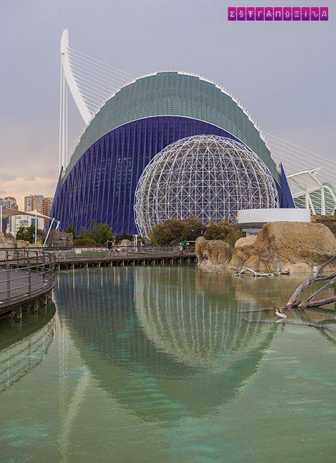 ciudad-de-las-artes-y-las-ciencias-valencia-espelho-agua