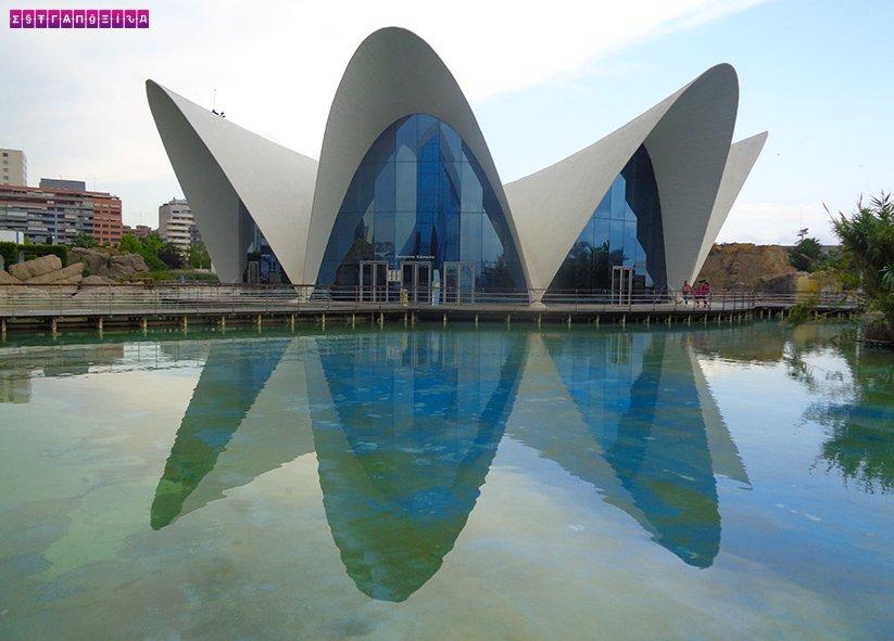 ciudad-de-las-artes-y-las-ciencias-valencia-oceanografic