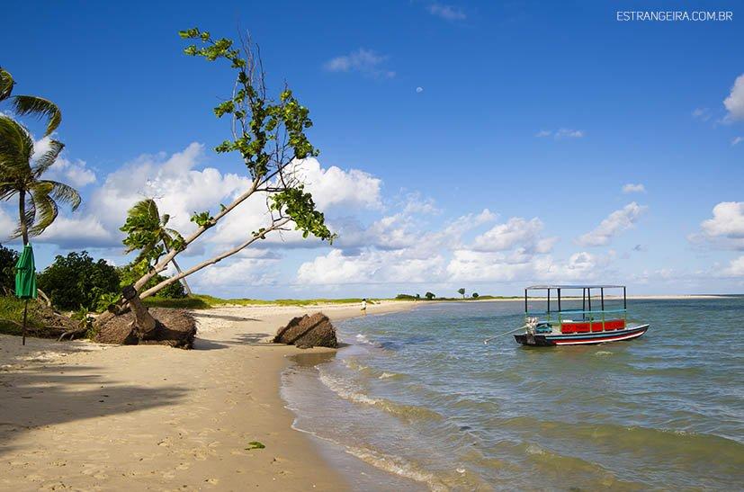 ilha-de-itamaraca-coroa-do-aviao-banco-de-areia