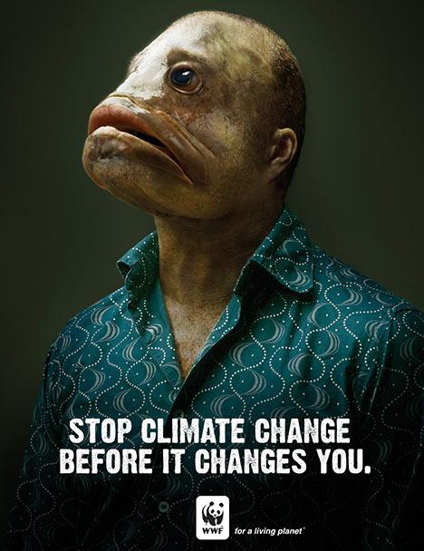 DETENGA EL CAMBIO CLIMATICO