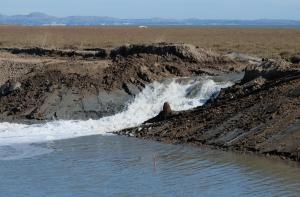 BBay Waters Flowing into 900 Acres of New Wetlands at Sears Point