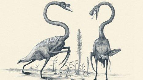 """Ganso - """"Essa é uma das minhas imagens favoritas de todo o livro. Como os paleontólogos do futuro iriam ver as aves se não fizessem ideia da existência de penas? Talvez suas longas asas seriam poderiam ser confundidas com ferramentas afiadas de caça."""""""