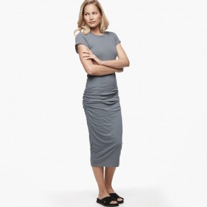 James Perse Classic Skinny Dress North, $225