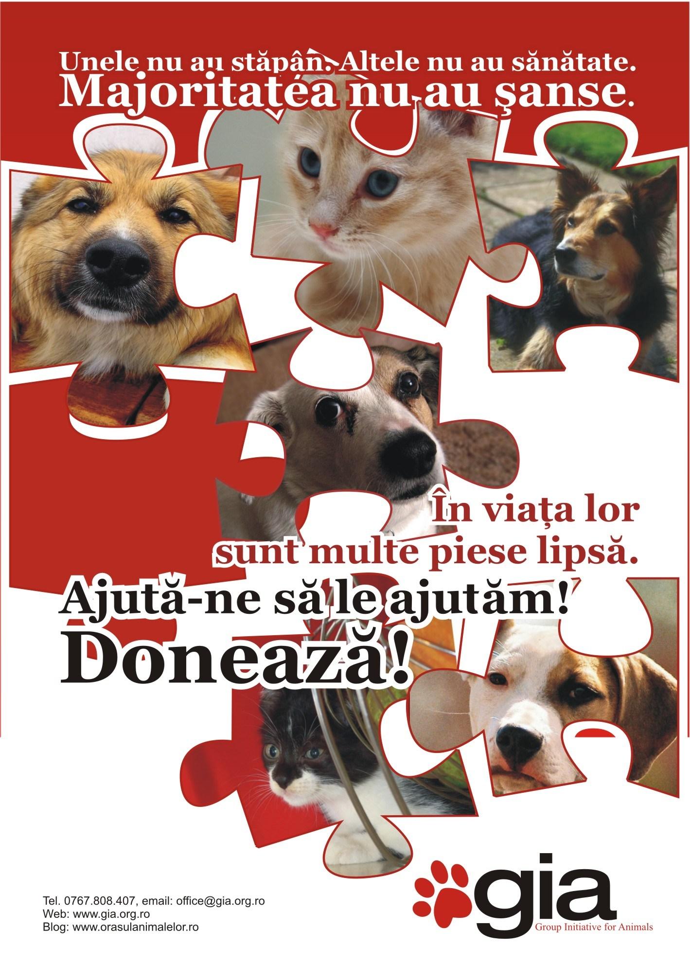 doneaza-gia-50x70