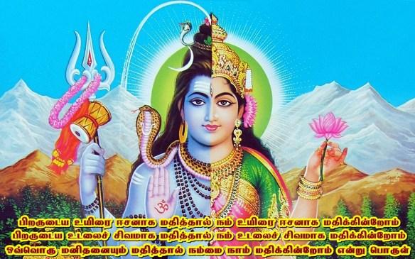 Siva sakthi -Ardhanreeswara