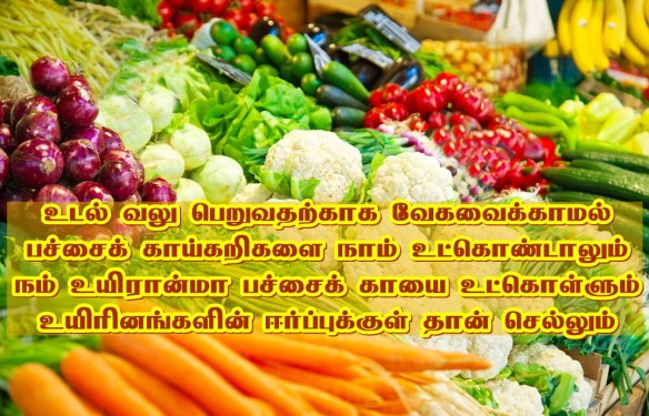 vegetables nutrition