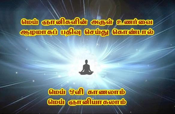 Wisdom light
