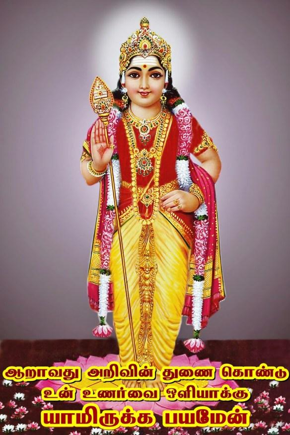 Murugu - Karthi