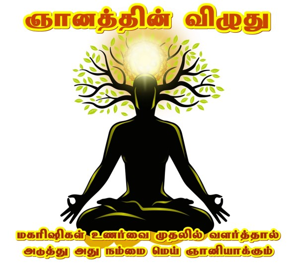 Tap root for Spirituality