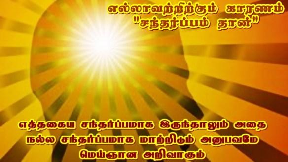 divine knowledges