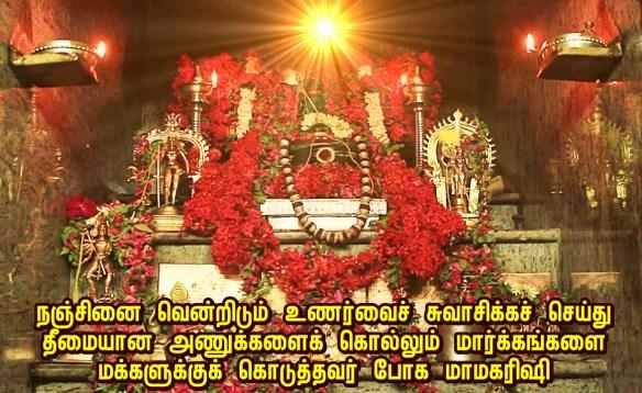 Bogar samadhi