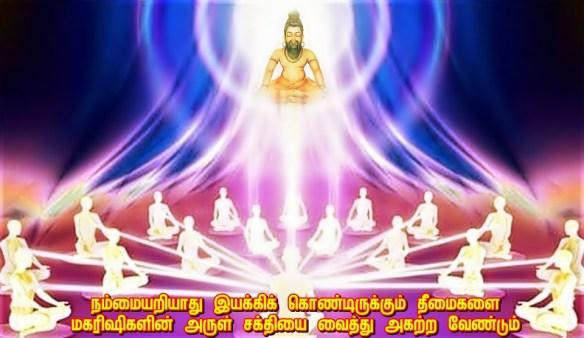 Sages light