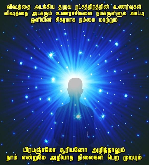 polaris lights.jpg