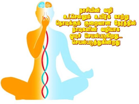 breathing yoga noe