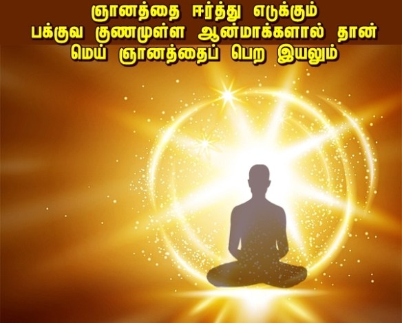 light meditators