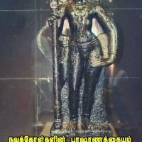 போகர் உருவாக்கிய நவபாஷாணச் சிலையின் இரகசியம்