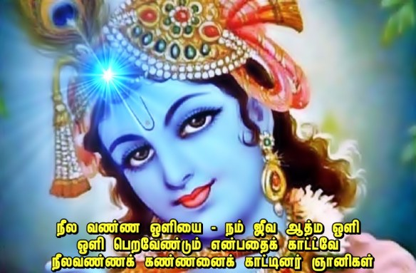 lord krishna - blue color