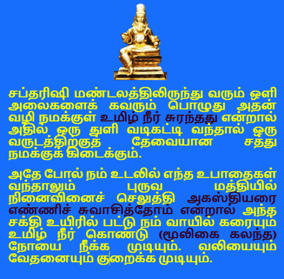 mantra 29