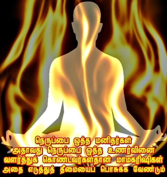 Fire maharishi