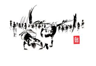 Encres : Capoeira – 472 « To slow... » [ #capoeira #watercolor #illustration] Encre sur papier 190gr / Ink on paper 190gr 21 x 29.7 cm / 8.3 x 11.7 in