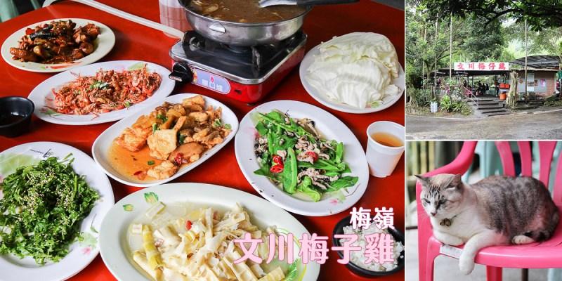 台南 來去海拔650公尺的梅嶺吃雞,開業30年梅子入菜酸香開胃好滋味 台南市楠西區|文川梅子雞