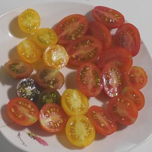 トマト食べ比べ