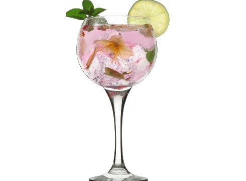 I. Gin Tonic lehiaketa antolatu du …eta kitto!-k