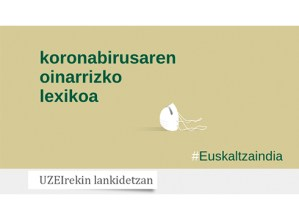 Koronabirusaren oinarrizko lexikoa argitaratu du Euskaltzaindiak