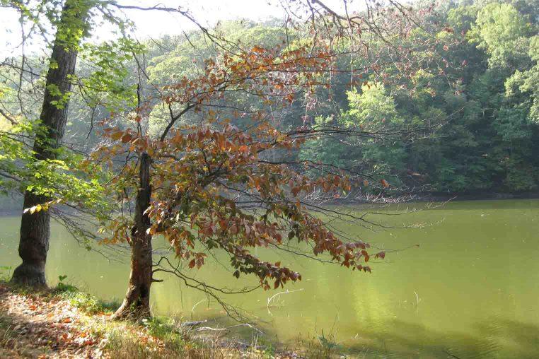 ogle lake at Brown County State Park