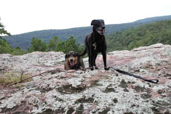 pedestal rocks, ozark national forest