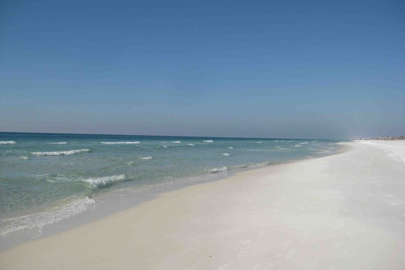 grayton beach state park in the florida panhandle