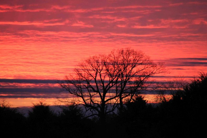 sunset on the natchez trace