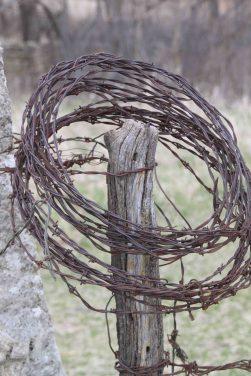 IMG_6585 barbed wire tallgrass prairie preserve