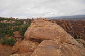 rock fin path