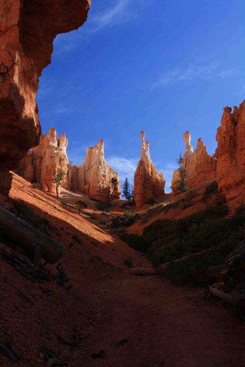 IMG_2526 peek a boo trail