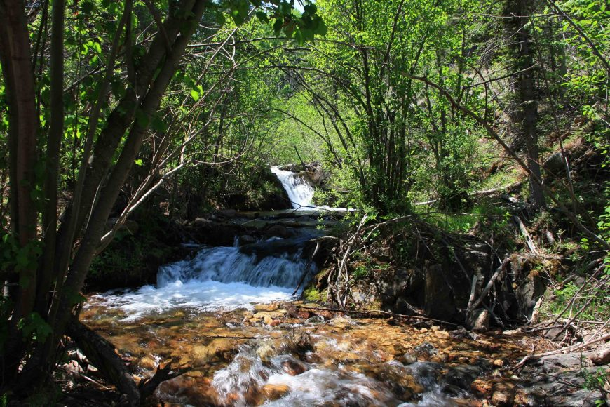 Cimarron River tributary in New Mexico