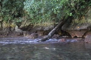 """Salt-water waterfall"" or a few rapids"