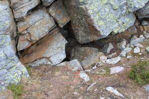 baby marmot in the middle of the rocks