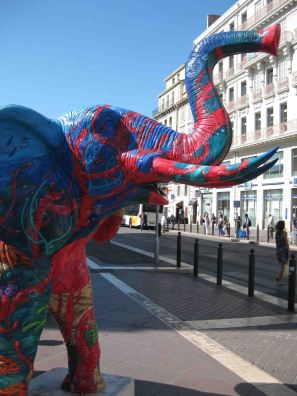 IMG_2007 elephant