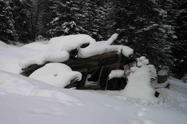 IMG_2770 mining cabin
