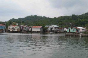 IMG_4204 houses