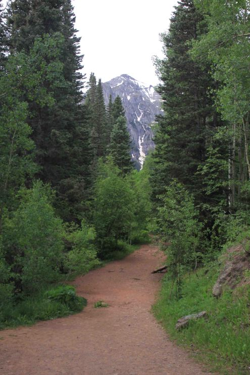 IMG_4238 trail