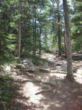 IMG_5410 trail
