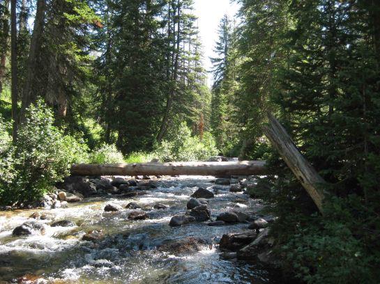 IMG_5735 creek