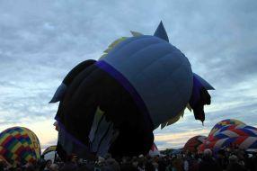 IMG_6670 owl balloon