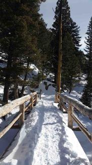 Trimble Outdoors - 720210 snowshoe