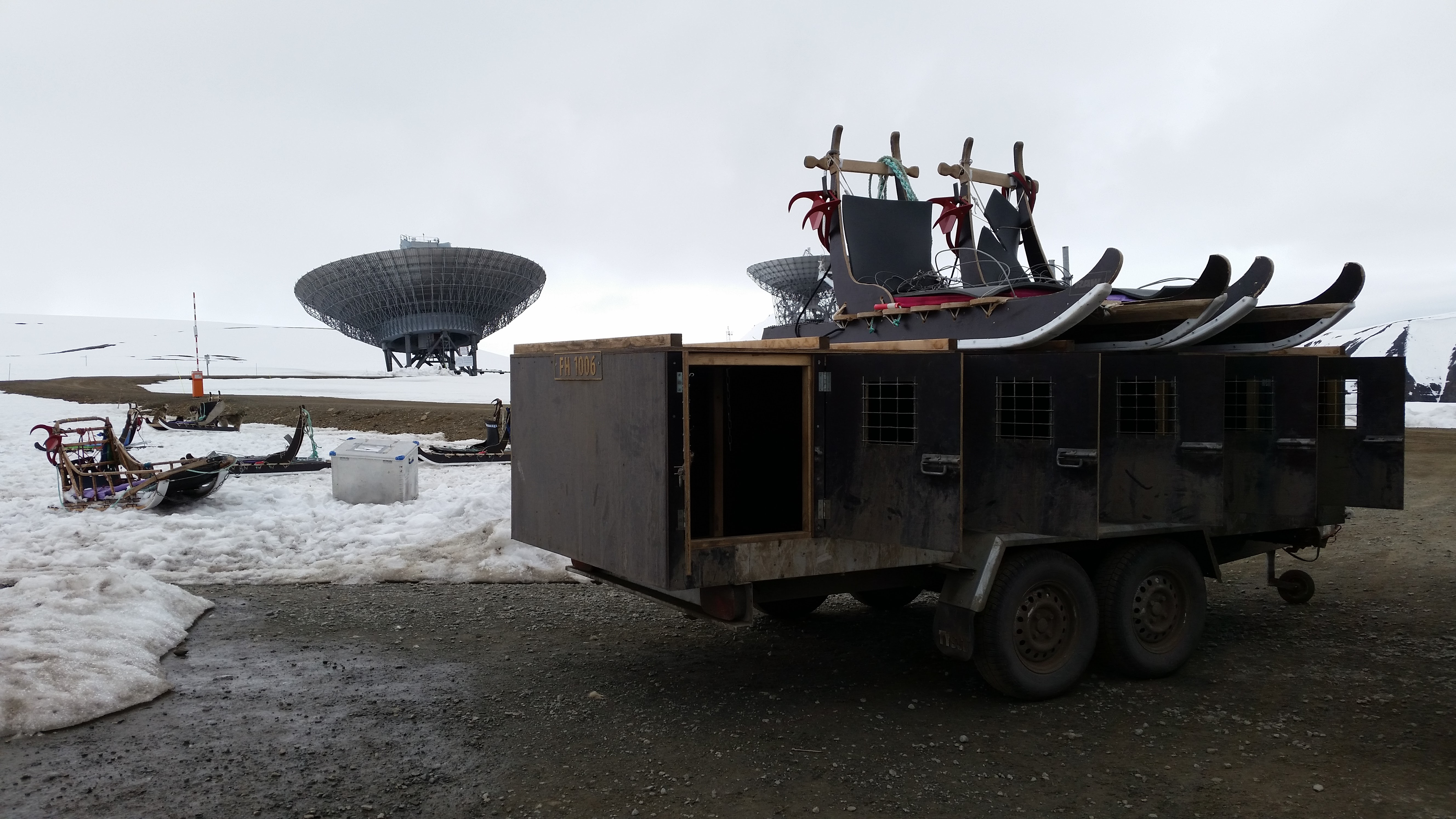dog transport for sledding near Longyearbyen, Spitsbergen