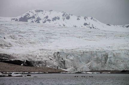 IMG_0326 glacier