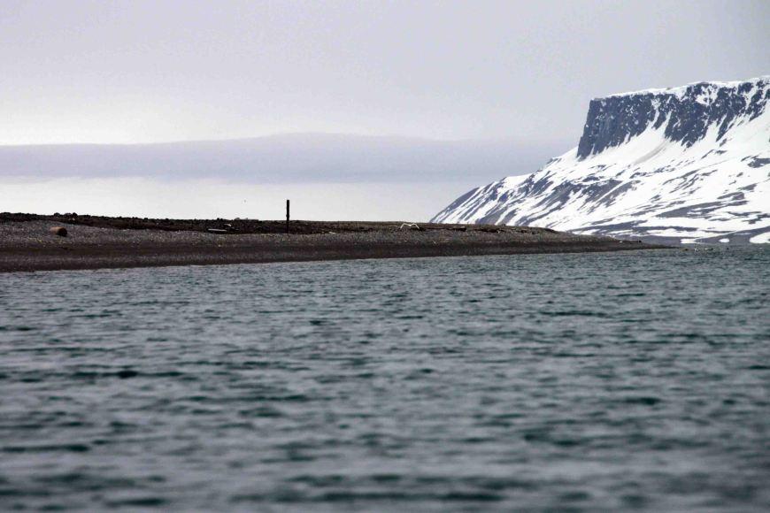 Faksevagen in the arctic