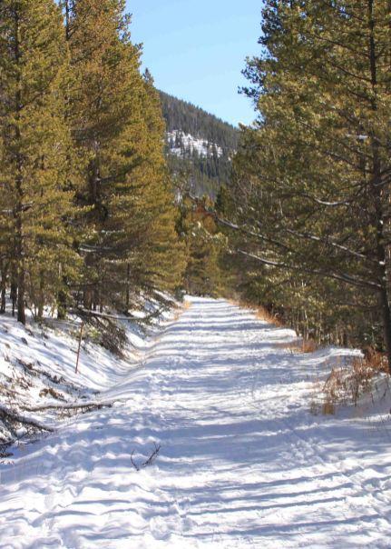 img_9462-trail